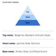 Traveller Earth Olfactory Pyramid